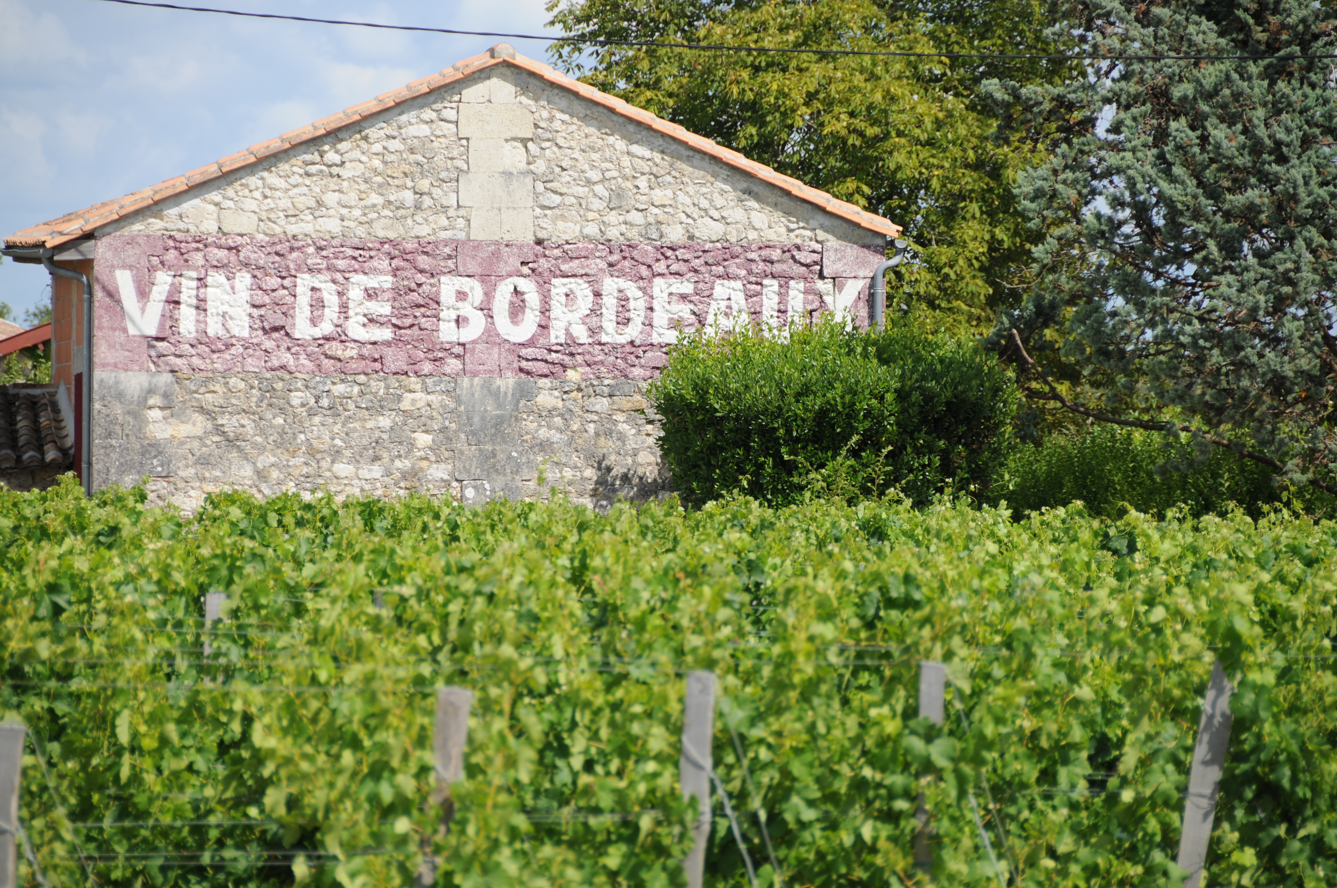 Blaye Bordeaux 159